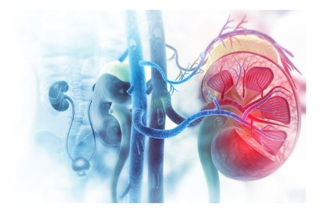 Easy and affordable access to Peritoneal Dialysis under PMNDP facilitates 'Living well with kidney disease'